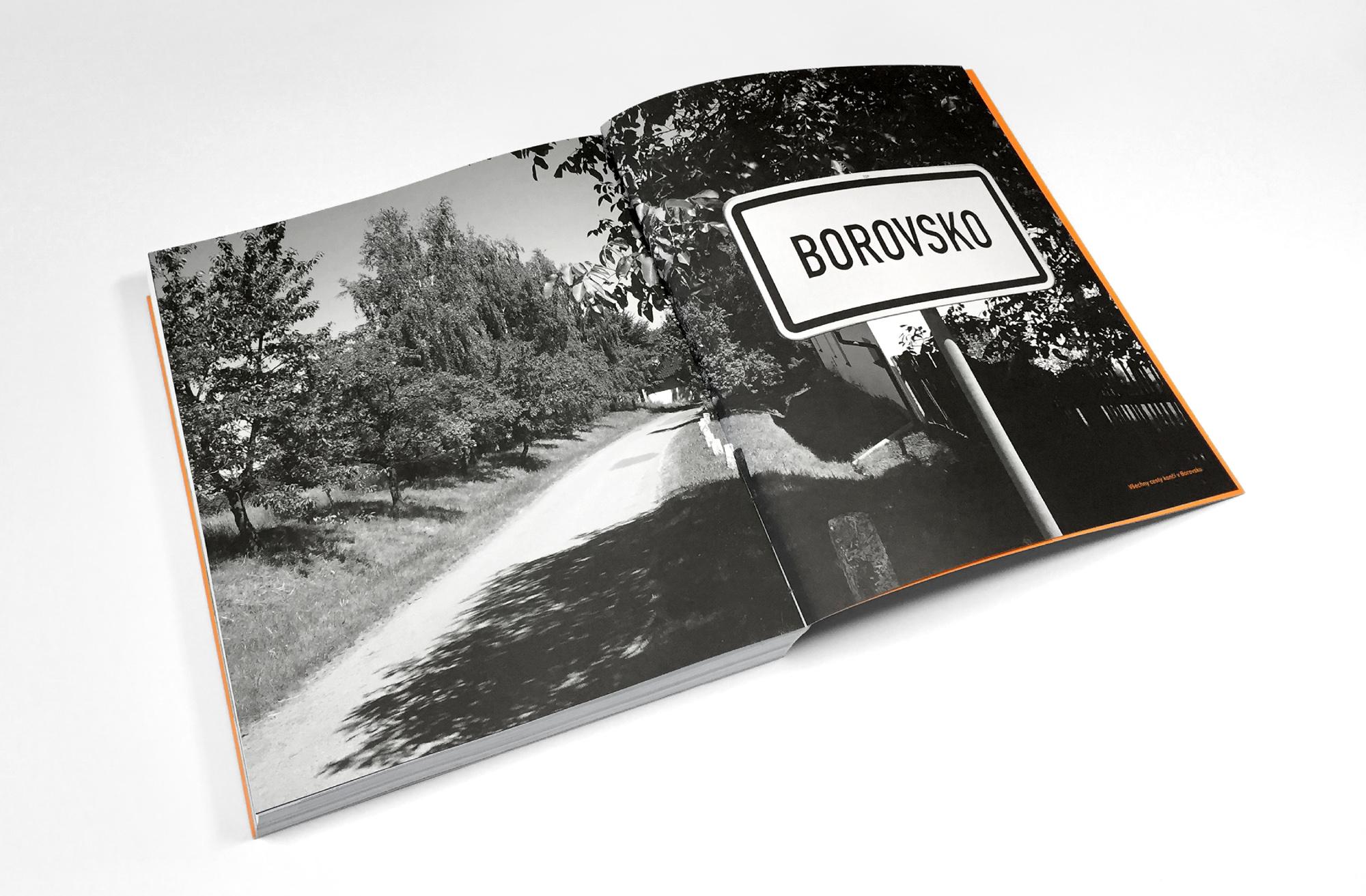 kristyna_greplova_BOROVSKO_12