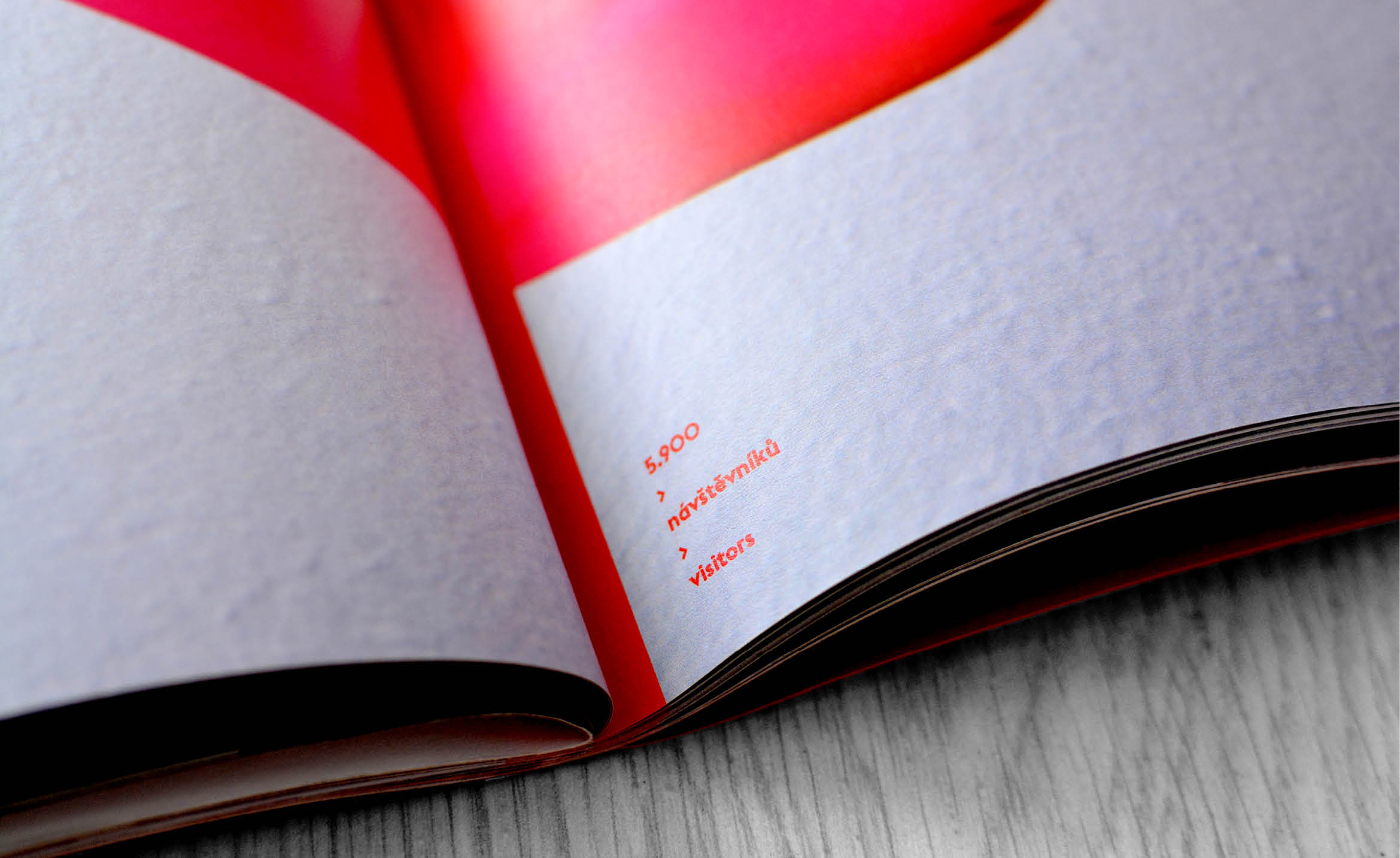 kristyna_greplova_diploma_project_4